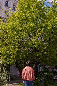 Eine Person mit lachsfarbener Jacke von hinten. Sie trägt Kopfhörer und läuft in einer Straße mit großen grünen Bäumen.