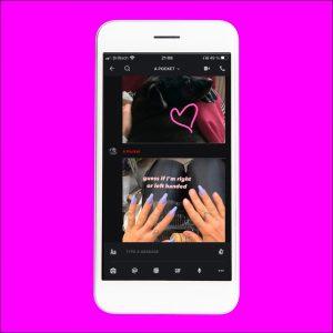 """Vor einem pinken Hintergrund ist ein Smartphone auf dem zwei Bilder zu sehen sind. Auf dem einen ist ein schwarzer Hund mit einem Herz. Auf dem Foto darunter sind zwei Hände mit violett Gel-Nägeln, wobei bei der rechten zwei Fingernägel fehlen. Über den Händen steht auf englisch """"Rate, ob ich Rechts- oder Linkshänder:in bin""""."""
